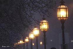 В Дружковке появилось современное уличное освещение
